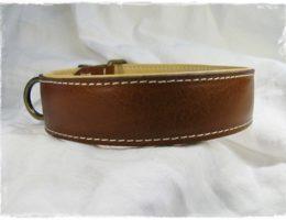 Hundehalsband-HH-14