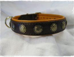 Hundehalsband-Peppi