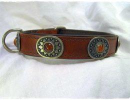 Hundehalsband-Sioux