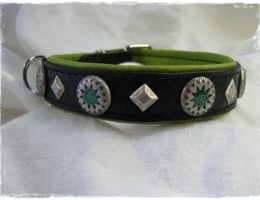 Hundehalsband-green star