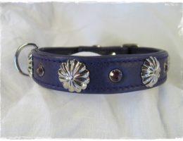 Hundehalsband-lila