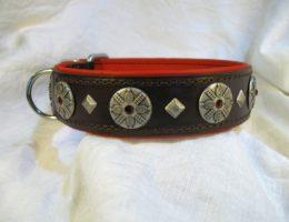 Hundehalsband-Patna